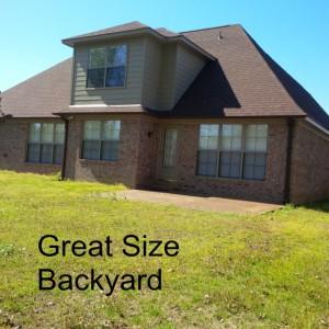 4 New Backyard
